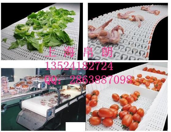 食品级塑料网带