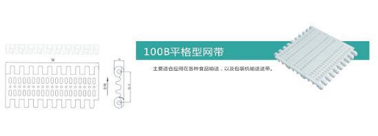 100B平板型网带